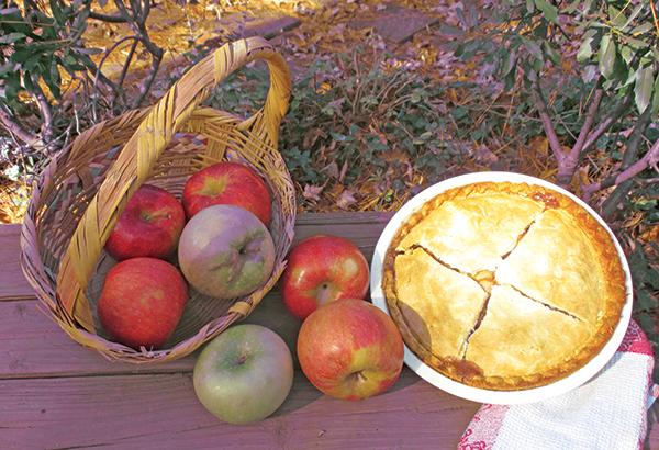 apple_eat